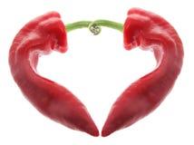 Pimenta vermelha Fotos de Stock Royalty Free