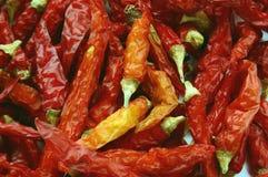Pimenta vermelha Imagens de Stock Royalty Free