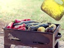 A pimenta vermelha e as beringelas turcas cozinharam em mangal imagens de stock royalty free