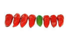 Pimenta vermelha e verde Fotografia de Stock Royalty Free