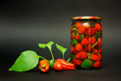 Pimenta vermelha enlatada Imagem de Stock Royalty Free