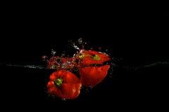 Pimenta vermelha na água Fotografia de Stock