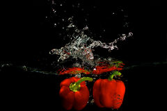 Pimenta vermelha na água Imagem de Stock