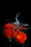 Pimenta vermelha na água Fotografia de Stock Royalty Free