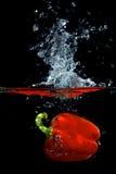 Pimenta vermelha na água Imagens de Stock Royalty Free