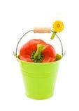 Pimenta vermelha na cubeta verde Fotos de Stock