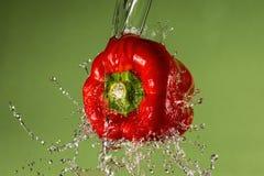 Pimenta vermelha no fundo verde Fotos de Stock