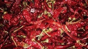 Pimenta vermelha quente Imagens de Stock Royalty Free