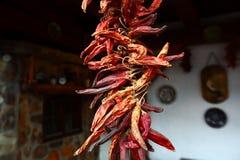 Pimenta vermelha quente e seca Fotografia de Stock Royalty Free