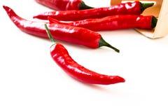 Pimenta vermelha quente em um fundo branco Imagem de Stock