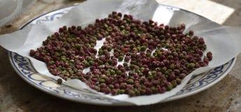 Pimenta vermelha secada em um prato típico de Granada fotografia de stock royalty free