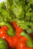 Pimentas Fotografia de Stock Royalty Free