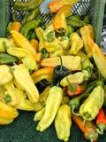 pimentas Foto de Stock Royalty Free