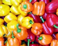 Pimentas alaranjadas, vermelhas & amarelas Imagem de Stock Royalty Free
