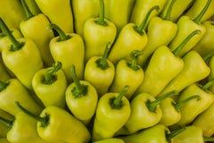 Pimentas amarelas Imagens de Stock