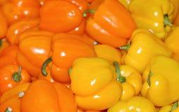 Pimentas amarelas & alaranjadas Imagem de Stock