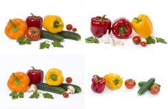 Pimentas amarelas e alaranjadas vermelhas com tomates em um fundo branco imagem de stock