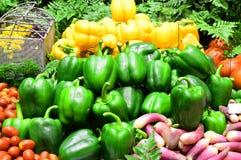 Pimentas amarelas e verdes maduras no mercado dos vegetais Imagem de Stock