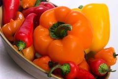 Pimentas Assorted imagem de stock