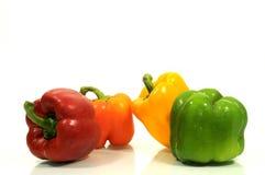 Pimentas coloridas Imagens de Stock Royalty Free