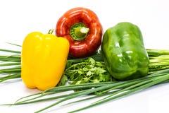 Pimentas coloridas com legumes frescos Fotografia de Stock
