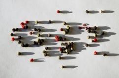Pimentas coloridas, de que madajut as sombras ásperas colocam em um fundo branco fotografia de stock
