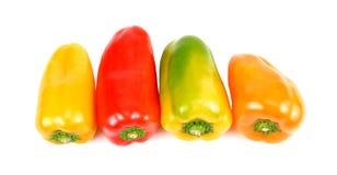 Pimentas coloridas sobre o fundo branco foto de stock
