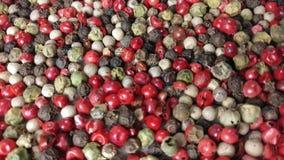 Pimentas da mistura: Pimentos vermelhos, pretos, brancos e verdes filme