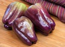 Pimentas de Bell roxas nutritivos Imagens de Stock Royalty Free
