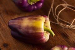 Pimentas de Bell roxas orgânicas Foto de Stock Royalty Free