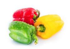 Pimentas de Bell vermelha, verde e amarela Fotografia de Stock Royalty Free
