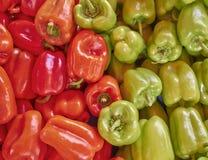 Pimentas de Bell vermelhas e verdes Foto de Stock