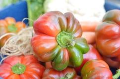 Pimentas de Bell vermelhas e verdes Foto de Stock Royalty Free