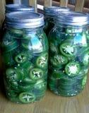 Pimentas de colocação em latas do Jalapeno Fotografia de Stock Royalty Free