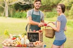Pimentas de compra da morena no mercado dos fazendeiros imagens de stock royalty free