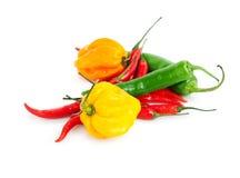 Pimentas de pimentão Fotos de Stock