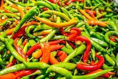 Pimentas de pimentão Imagem de Stock