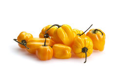 Pimentas de pimentão amarelas do habanero isoladas foto de stock