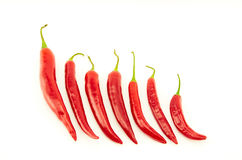 Pimentas de pimentão encarnados Foto de Stock