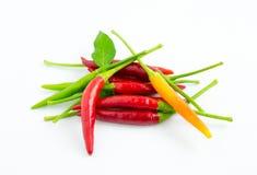 Pimentas de pimentão quente fotografia de stock