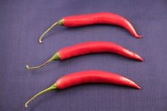 Pimentas de pimentão quente fotografia de stock royalty free