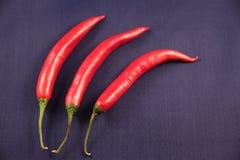 Pimentas de pimentão quente fotos de stock
