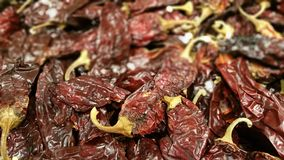Pimentas de pimentão secadas Imagem de Stock