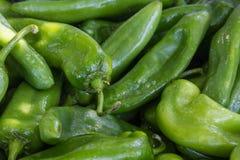 Pimentas de pimentão verdes Fotos de Stock Royalty Free