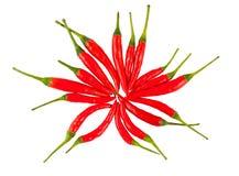 Pimentas de pimentão vermelho imagem de stock
