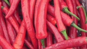 Pimentas de pimentão vermelho no mercado vídeos de arquivo