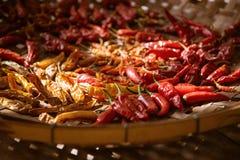 Pimentas de pimentão vermelho secadas Imagens de Stock