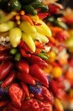 Pimentas de pimentões encarnados rasas Imagens de Stock