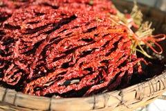 Pimentas de pimentões vermelhos secadas Fotografia de Stock Royalty Free