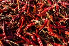 Pimentas de pimentões vermelhos secadas quentes Culinária mexicana tradicional Alimento saudável do vegetariano imagens de stock royalty free